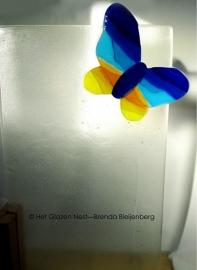 vlinder in blank glazen plaat