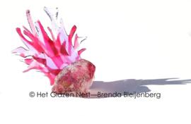 Grillige roze glaskunst