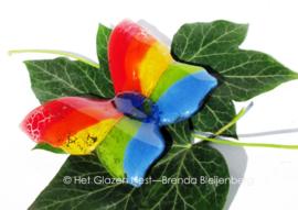 vlinder in regenboog kleuren