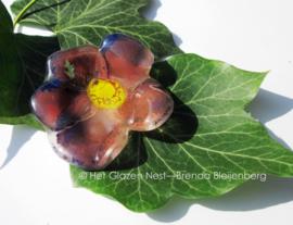 klein paars bloemetje met roze accenten