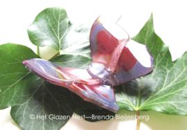 vlinder in paarse kleuren