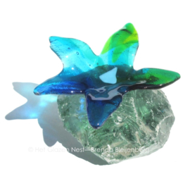 blauwe groene bloem op glasbrok