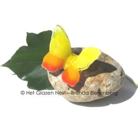 Geel en oranje vlinder op ronde kei