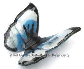 vlinder in wit en blauw met zwarte randen