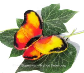 geel en oranje vlinder met zwart randje
