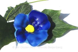 blauw bloemetje met geel hart