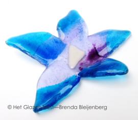 Glas bloem in aqua en lila