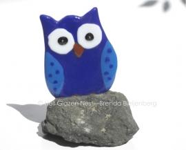 Blauw uiltje in diabas-steen