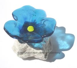 bloemetje op steen in blauw glas