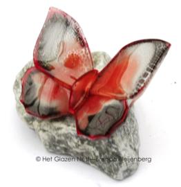 Kleine vlinder op grijs steentje