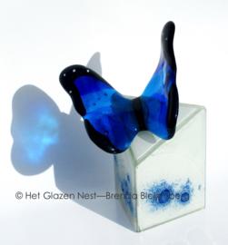 Blauwe vlinder op kleine witte urn