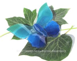 vlinder in groen blauwe kleuren