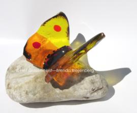 Speels vlindertje in geel en oranje