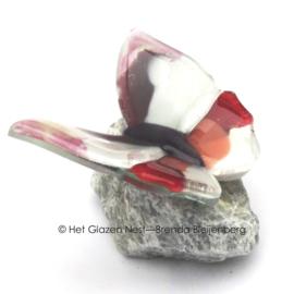 Kleine vlinder op steen