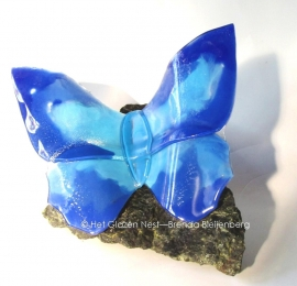 grote blauwe vlinder op ruwe steen