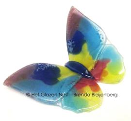 Glazen vlinder in bijzondere kleuren