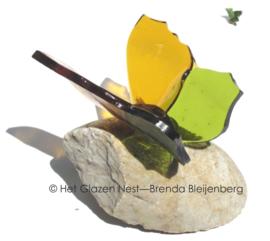 groen en gele vlinder met spitse vleugels