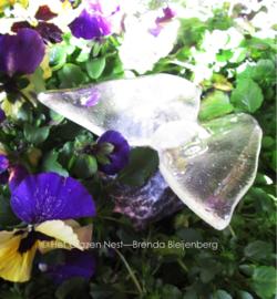 vlinder in blank doorzichtig glas