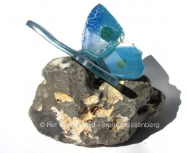 Vlinder in aqua en blauwegroene kleuren