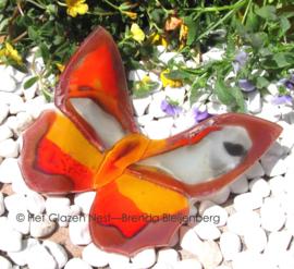 vlinder in oranje en lila kleuren