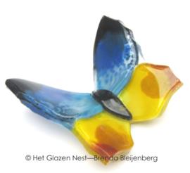 vlindertje in blauw en geel