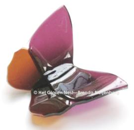 Vlinder in fuchsia en oker kleuren