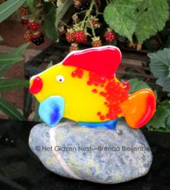 speels visje in steen