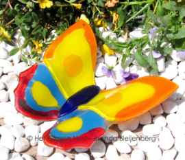 grote vlinder in bonte kleuren