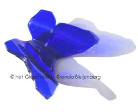 Kobalt blauwe vlinder in doorzichtig glas