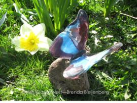 Vlinder in paars en vlinder op lavas