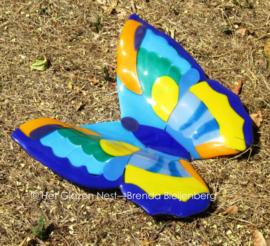 grote vlinder in geel en blauw