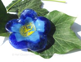 blauwe bloem met geel hartje