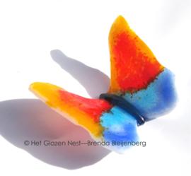 vlindertje in oranje en blauw