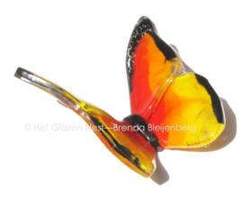 Oranje vlinder met zwarte randen