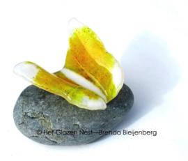Geel en witte vlinder op  Iceland steen