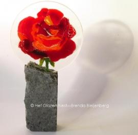 Rode roos op hoog stuk graniet