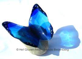 Grote blauwe vlinder op ronde kei