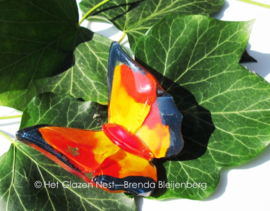 vlindertje in geel en oranje met zwarte randjes