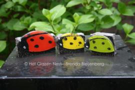3 kleine lieveheersbeestjes op steentje