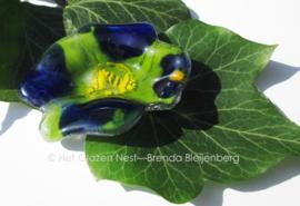 kleine groen en blauwe bloem