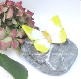 Geel en wit vlindertje op grijze kei
