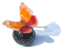 Oranje en roze vlinder op zwarte bol-urn