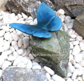 vlinder in zee groen op bijzondere steen