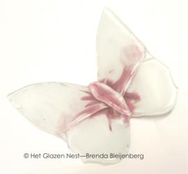 Witte vlinder met roze accenten