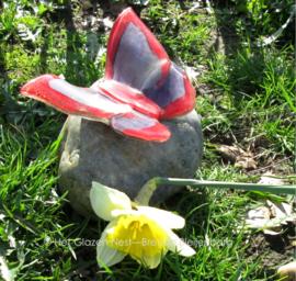Vlinder in rood en paars op ronde kei
