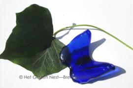 kleine vlinder in blauwe kleuren