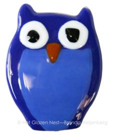 blauwe uil