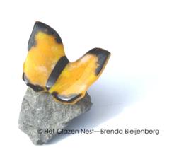 warm gele vlinder met zwarte randen