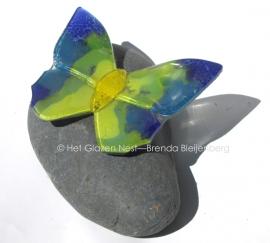 Vlinder in geel, groenig en blauw op een blauwige pebble