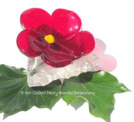 rood bloemetje op ruwe glasbrok